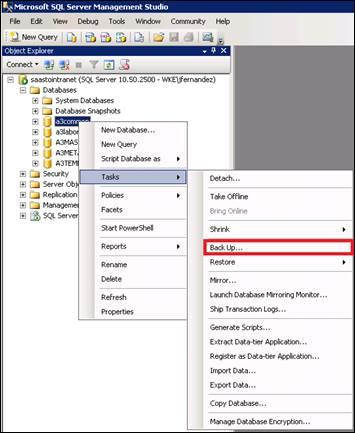 copia seguridad sql server 2005 2008 2012