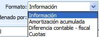Formato Información del inmovilizado