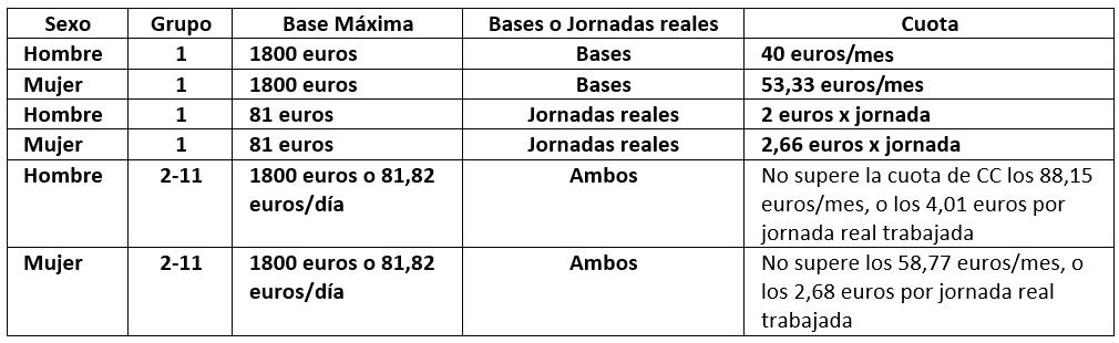 tabla_ejemplo_bonificacionesx