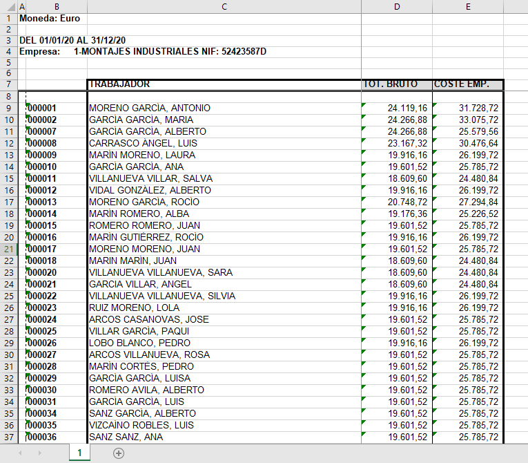 excel bruto anual