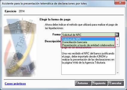 presentacion telematica lotes