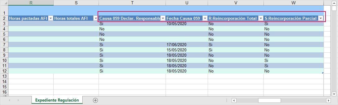 Excel_formato_5_ERTE