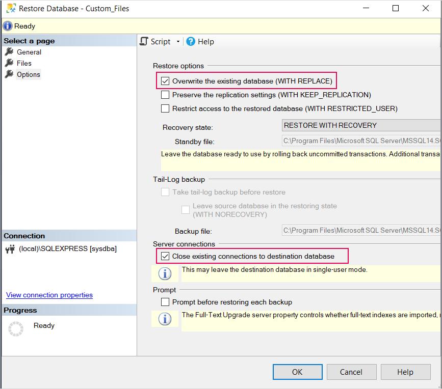 restore database custom files