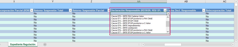 declaracion responsable RD11_21