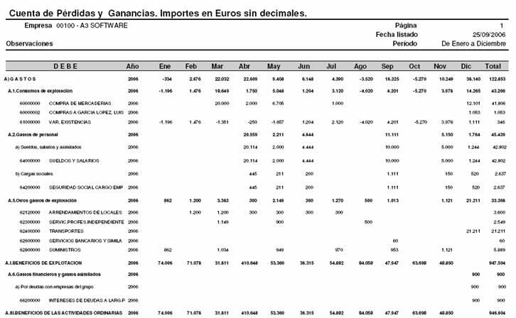 Cuenta de Pérdidas y Ganancias. Importes en Euros sin decimales